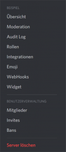 Discord Server einstellen